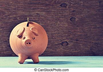 coin in a piggy bank