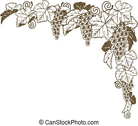 coin, ornement, vigne, raisin
