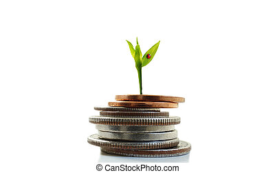 coin pile - Green plant shoot with ladybug growing from...