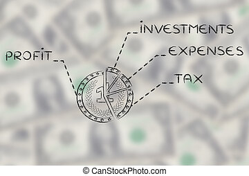 coin split like a pie chart with budget element text on blurred dollar background