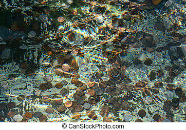 Coins in a fountain pool