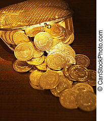 Coins in Purse