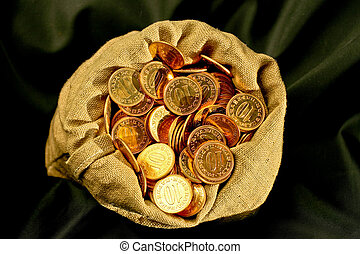Bunch of golden coins in money sack