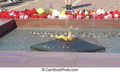 Coins thrown to Eternal Flame monument to Unknown Soldier of World War II