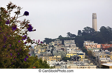 The Best Views in San Francisco - Visiting Coit Tower and ... |Coit Tower Flowers