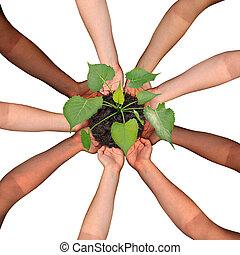 colaboración, comunidad