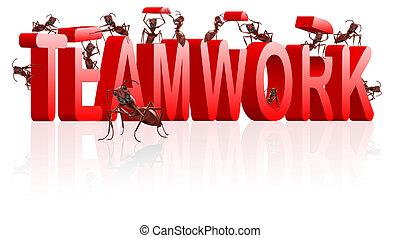 colaboración, trabajo en equipo, o, cooperación