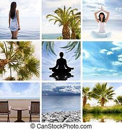 colagem, aproximadamente, saúde, e, meditação