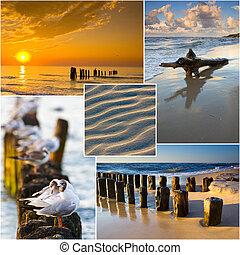 colagem, Báltico, mar, Polônia