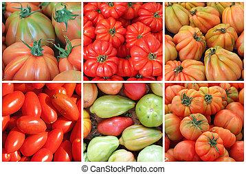 colagem, com, variedade, de, tomates