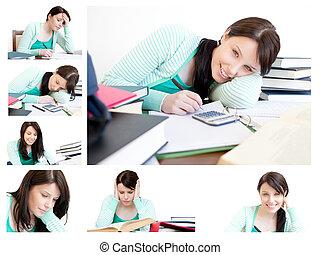colagem, de, um, mulher jovem, estudar