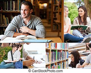 colagem, estudantes, leitura, livros