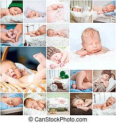 colagem, fotografias, bebês, dormir