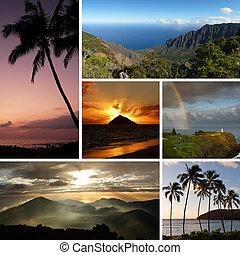 colagem, fotografias, múltiplo, havaí, típico