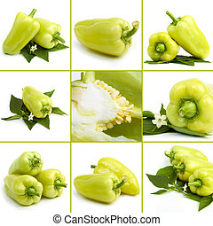 colagem, pimenta doce, verde