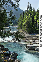 Cold Clear Mountain Stream