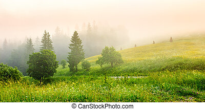 cold fog on hot sunrise in mountains - cold morning fog with...