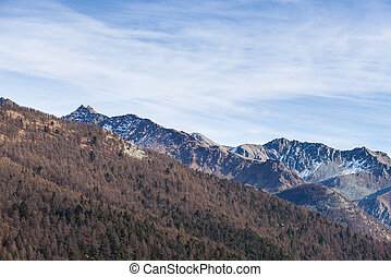 Cold light on rocky mountain peaks and larch forest