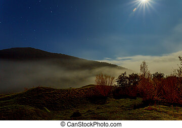 cold morning fog on a hillside meadow near mountain at night in moon light