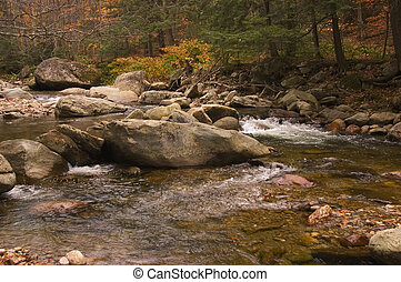 Cold River, near Shrewsbury, Vermont