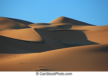 Cold shades and traces of animals on sand of the White dune...