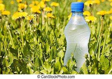 water bottle in a summer meadow