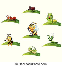 coleções, inseto, jogo, folha, caricatura