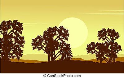 colección, de, árbol, en, colina, paisaje