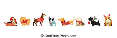 colección, de, navidad, perros, feliz navidad, ilustraciones, de, lindo, mascotas, con, accesorios, como, un, knited, sombreros, suéteres, bufandas