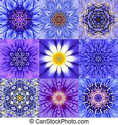 colección, de, nueve, azul, concéntrico, flor, mandalas,...