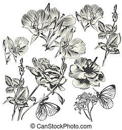 colección, de, vector, mano, dibujado, flores, para, diseño