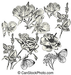 colección, mano, vector, diseño, dibujado, flores