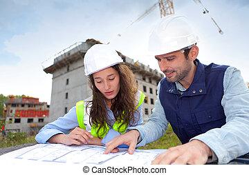 colegas trabalho, trabalhar, um, local construção