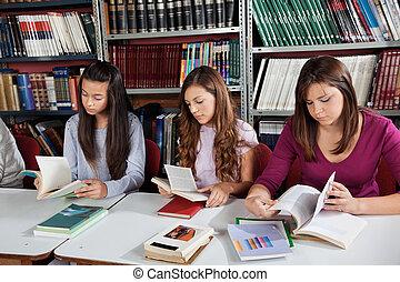 colegialas, lectura, libros, en, biblioteca