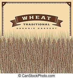 colheita trigo, retro, cartão, marrom