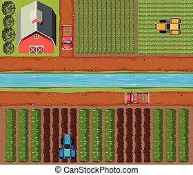 colheitas, glebas cultivadas, aéreo, cena, celeiro
