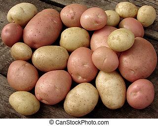colhido, batata, tubers