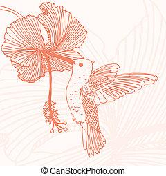 colibrí, con, flor