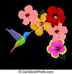 colibrí, flor