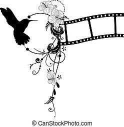colibrí, hibisco, y, filmstrip