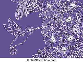 colibrí, tropical, plantas, y, flores