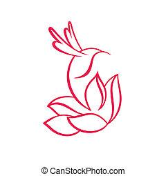 colibrí, y, flor, señal