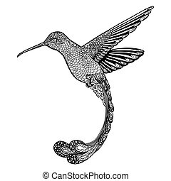 colibrí, zentangle, style., vector, ilustración