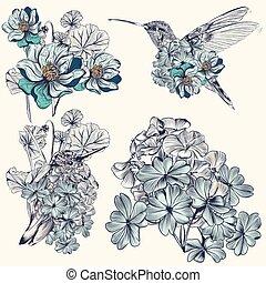 colibris, ensemble, vecteur, conception, main, dessiné