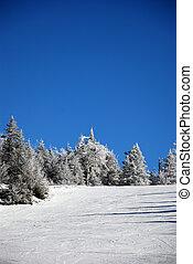 colina, esquiando