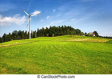 colina verde