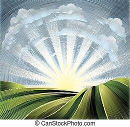 colinas, campos, sol, rodante, grabado, aguafuerte