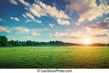 colinas, pradera, campo