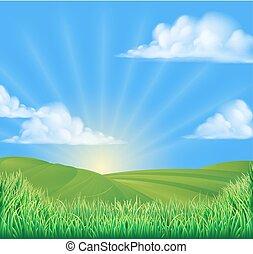 colinas rolantes, campo, ponha ao sol experiência