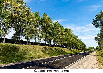 colinas, verde, largo, camino